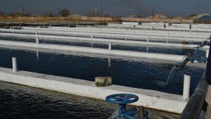 Καινοτομία στην υδατοκαλλιέργεια Πρόγραμμα ΕΣΠΑ