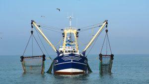Σχέδια - Πρόγραμμα Αλιείας Υδατοκαλλιέργειας